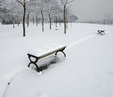 Free Winterly Park Stock Photos - 22255913