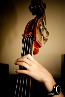 Free Contrabass Stock Images - 22258514