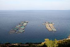 Free Aquaculture Stock Image - 22259131