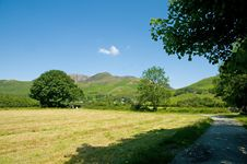 Free Nature Of Cumbria Royalty Free Stock Image - 22259376