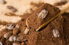 Free Coffee Ground And In The Grain Stock Images - 22264194