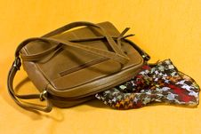 Free Shoulder Bag And Scarf Royalty Free Stock Photo - 22265455
