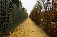 Free Footpath In Autumn Stock Photography - 22274622