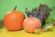 Free Halloween Stock Image - 22275231