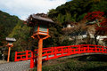 Free Japanese Bridge Stock Photography - 22282332