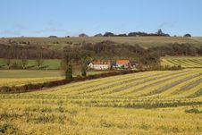 Free An English Rural Landscape With Farm Royalty Free Stock Images - 22282689