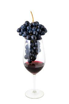 Free Wine Royalty Free Stock Photos - 22288478