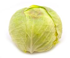 Free Cabbage Royalty Free Stock Photos - 22288808