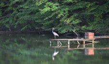 Free Fishing Stock Photo - 22290200