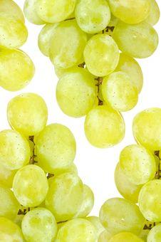 Free White Grape Background Royalty Free Stock Photos - 22293828