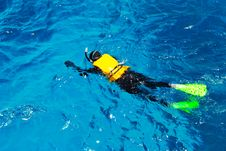 Free Snorkelling Stock Photos - 22294633