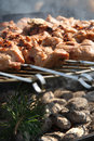 Free Meat Kebabs On Bbq Royalty Free Stock Photos - 2232838