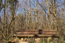 Free Bench In Nature Royalty Free Stock Images - 2230819