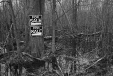 Land For Sale Royalty Free Stock Photography