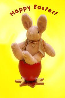 Free Easter Bunny Stock Photos - 2236723