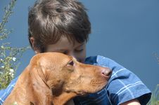 Free Young Boy With A Dog Royalty Free Stock Image - 2238376
