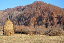 Free Autumn Stock Image - 22300951