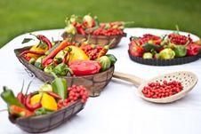 Free Fresh Vegetable Stock Photo - 22305730