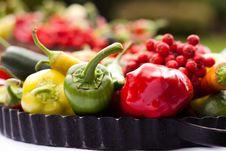 Free Fresh Vegetables Royalty Free Stock Photos - 22305838