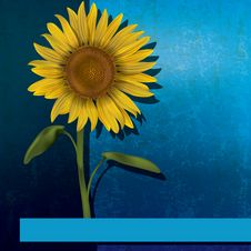 Free Grunge Floral Illustration With Sunflower Stock Image - 22308711
