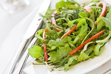 Free Fresh Green Salad With Red Peppers Royalty Free Stock Photo - 22310795