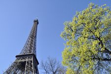 Free The Eiffel Tower Royalty Free Stock Photo - 22313145