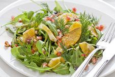 Free Orange And Pomgranate Salad Royalty Free Stock Photos - 22313838