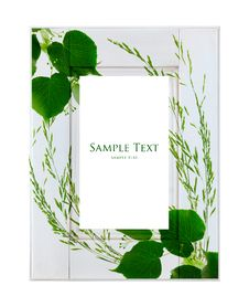 Free White Frame With Green Leaves Royalty Free Stock Photo - 22317205