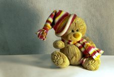 Free Teddy Bear With Hair And Wool Scarf Stock Photography - 22322842