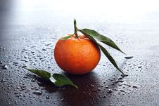 Free Tangerine With Leaves Royalty Free Stock Photo - 22335895