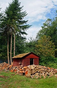 Woodshed In The Woods Royalty Free Stock Image