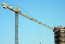 Free Yellow Whooping Crane Stock Image - 22336801