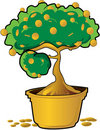 Free Money Tree Royalty Free Stock Photos - 22358178