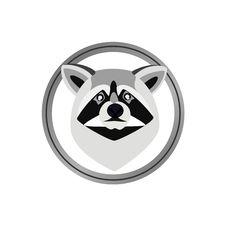 Free Raccoon Stock Photo - 22357270