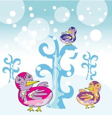 Free Funny Birds In Winter Garden Stock Photos - 22362763