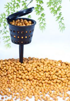 Free Mini Fertilizer Basket Royalty Free Stock Photos - 22395078