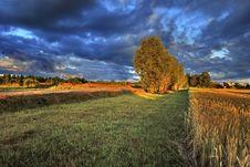 Free Rural Landscape At Sunrise, Latvia Royalty Free Stock Photo - 22399825