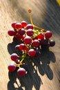 Free Grapes Royalty Free Stock Image - 2246016