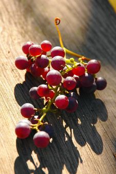 Free Grapes Royalty Free Stock Image - 2246016