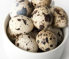 Free Quail Eggs Stock Photo - 22403660