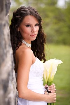 Free Young Bride With Lilies Stock Image - 22405631
