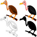 Free Vector Icons : Vultures - Colors And Silhouette Stock Photo - 22410940