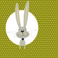 Free Card With Cute Bunny Stock Images - 22416954