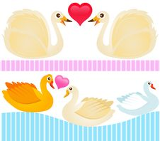 Free Cute Vector Icons : Ducks, Goose, Swan Royalty Free Stock Photography - 22410907