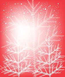 Free Christmas Trees Stock Photos - 22414383