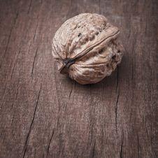 Free Walnut Piece Stock Images - 22415454