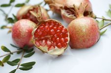 Free Pomegranate Stock Photo - 22416420