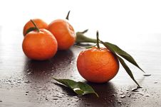Free Tangerines With Leaves Royalty Free Stock Photos - 22416788