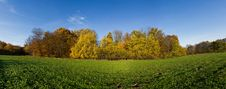 Free Autumn Panorama Royalty Free Stock Images - 22425989