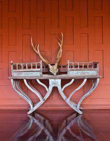 Horn Deer Beautiful Royalty Free Stock Photos